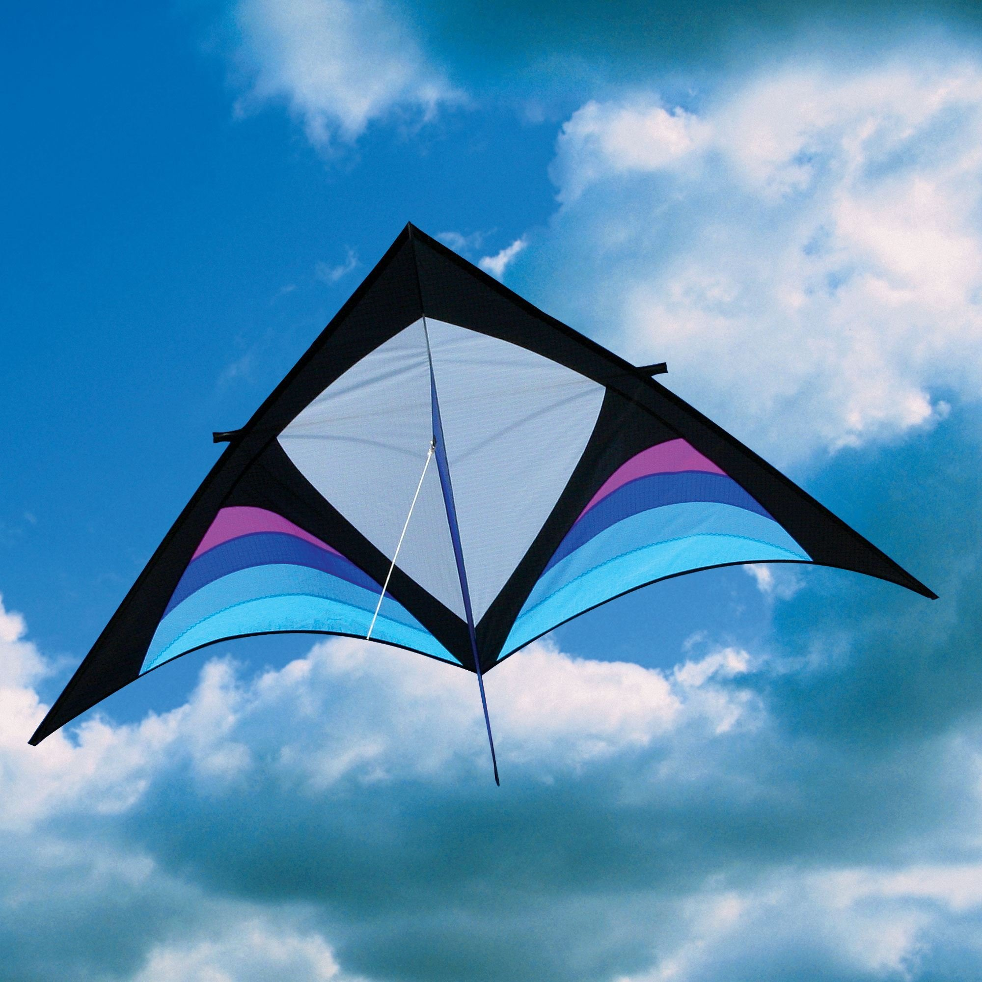 Into The Wind Dan Leigh Cool XFS Delta Kite