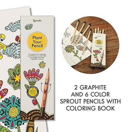 Sprout Kit De Coloriage Pour Enfants Boîte De 8 I Crayons