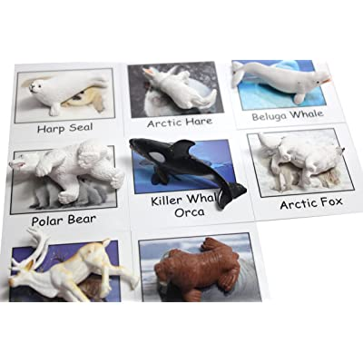 Montessori Arctic Polar Animal Match - Miniature Arctic Animal Toy Figurines with Matching Cards - 2 Part Cards. Montessori Learning Toy, Language Materials Busy Bag Activity: Toys & Games