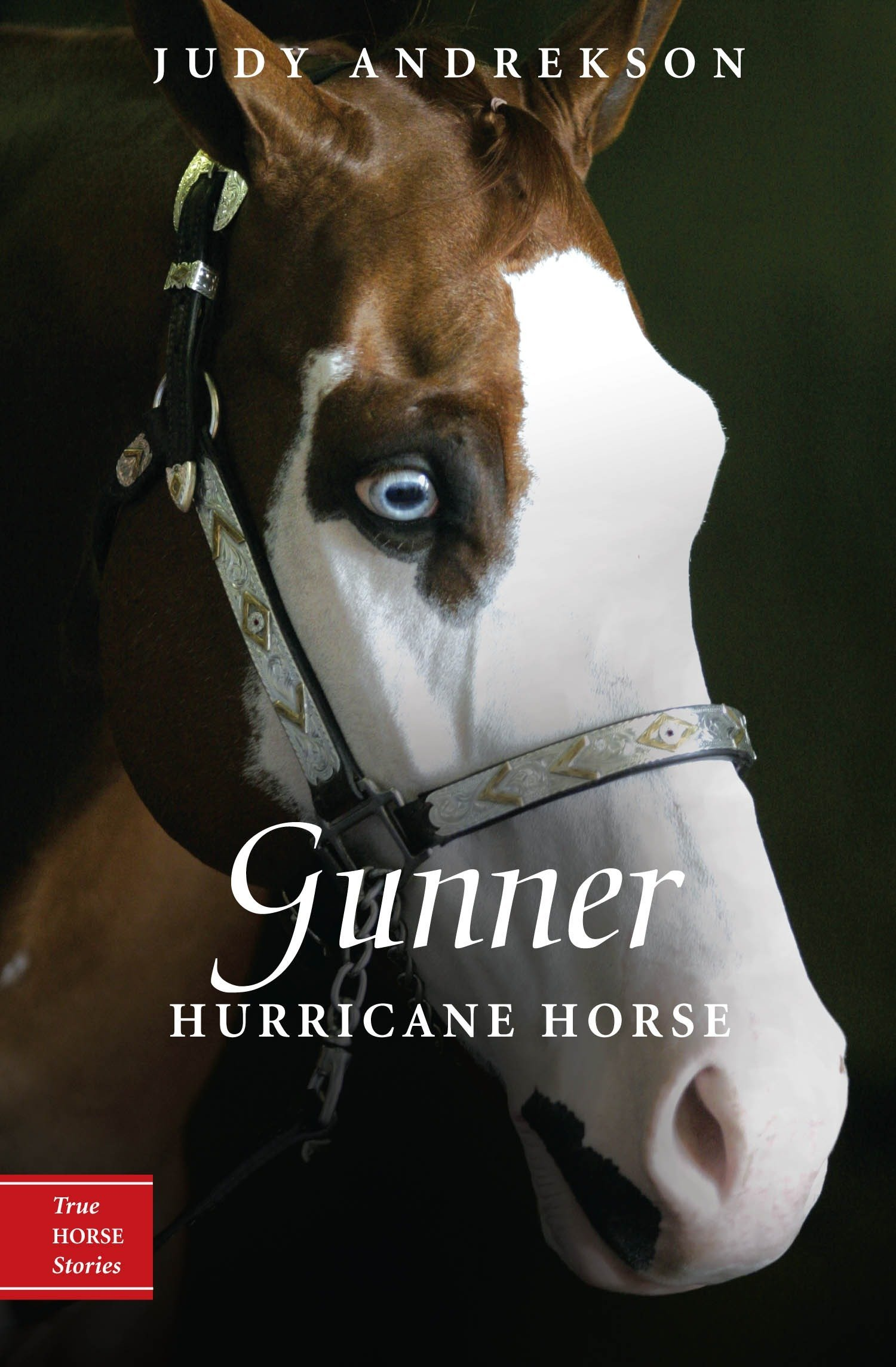 Download Gunner: Hurricane Horse (True Horse Stories) pdf