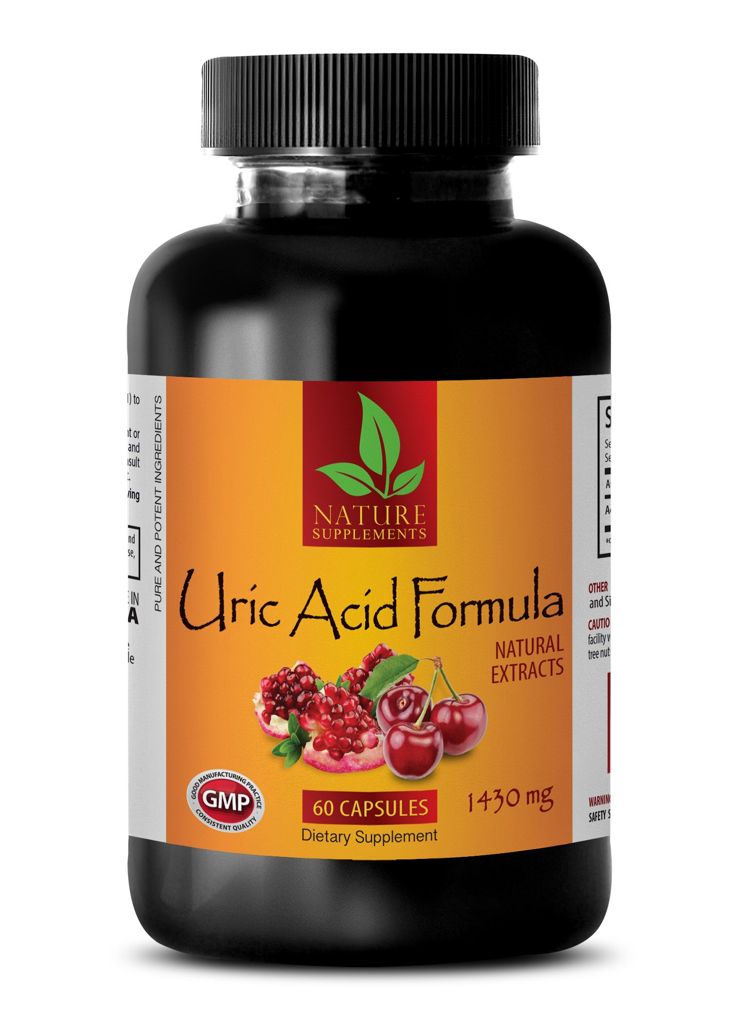 antioxidant Extreme - URIC Acid Formula - Natural EXTRACTS - Urinary Flush and Support with Cranberry - 1 Bottle (60 Capsules)