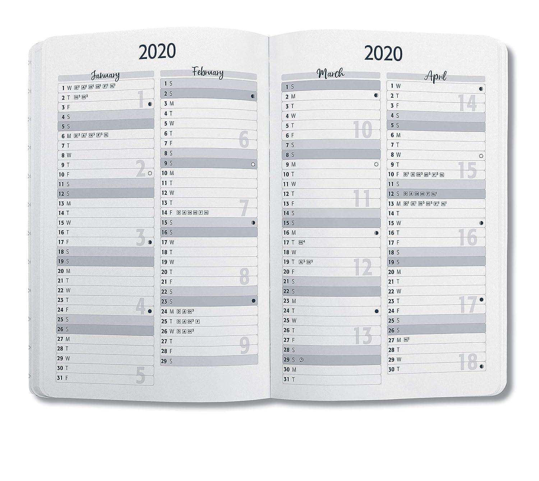 SIGEL J0304 Agenda semanal Jolie 2020, tapa dura, 9,5 x 15 cm, mariposas verdes