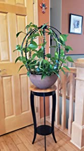 Scroll Trellis Climbing and Hanging Plants Support, Indoor and Outdoor, Sphere 3-D Shape Topiary Frame Obelisk (2, Black)
