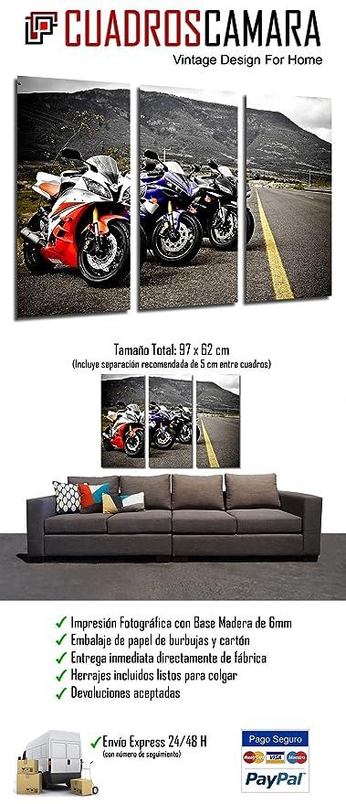 Amazon.com: Pictures Camera Poster Photograph, Multi-Colour ...