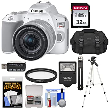 Amazon.com: Canon EOS Rebel SL3 - Cámara réflex digital Wi ...