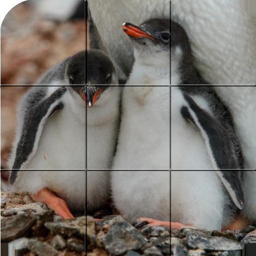 Tile Puzzle - Penguins (Penguin Tile)