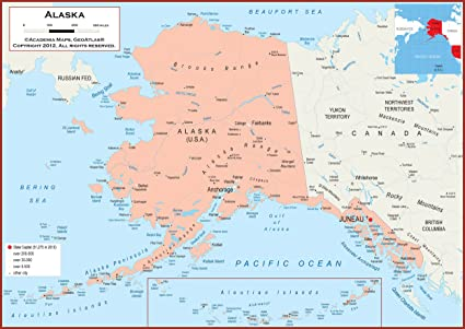 Political Map Of Alaska.Amazon Com 42 X 30 Alaska State Wall Map Poster With Counties