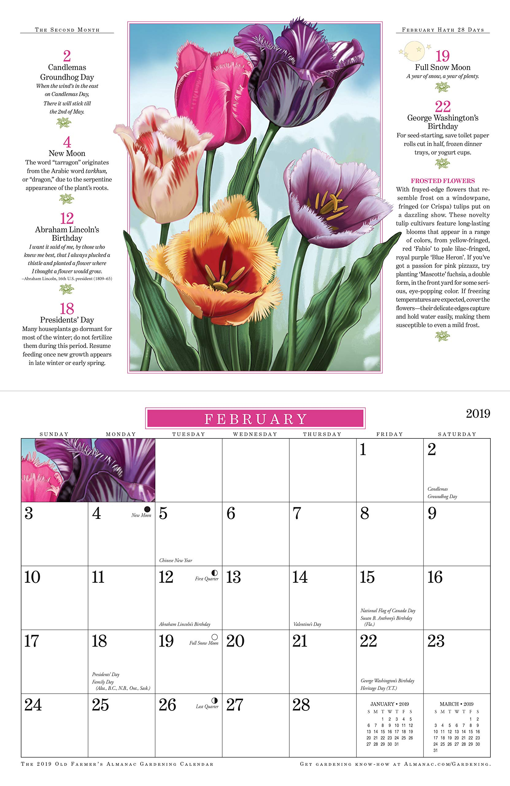 farmers almanac best days to plant