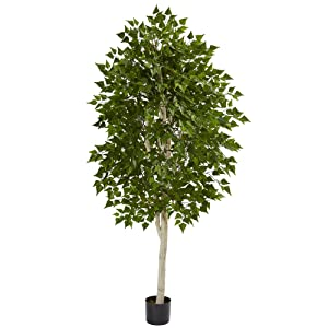 Nearly Natural 6' Birch Artificial Tree, Green