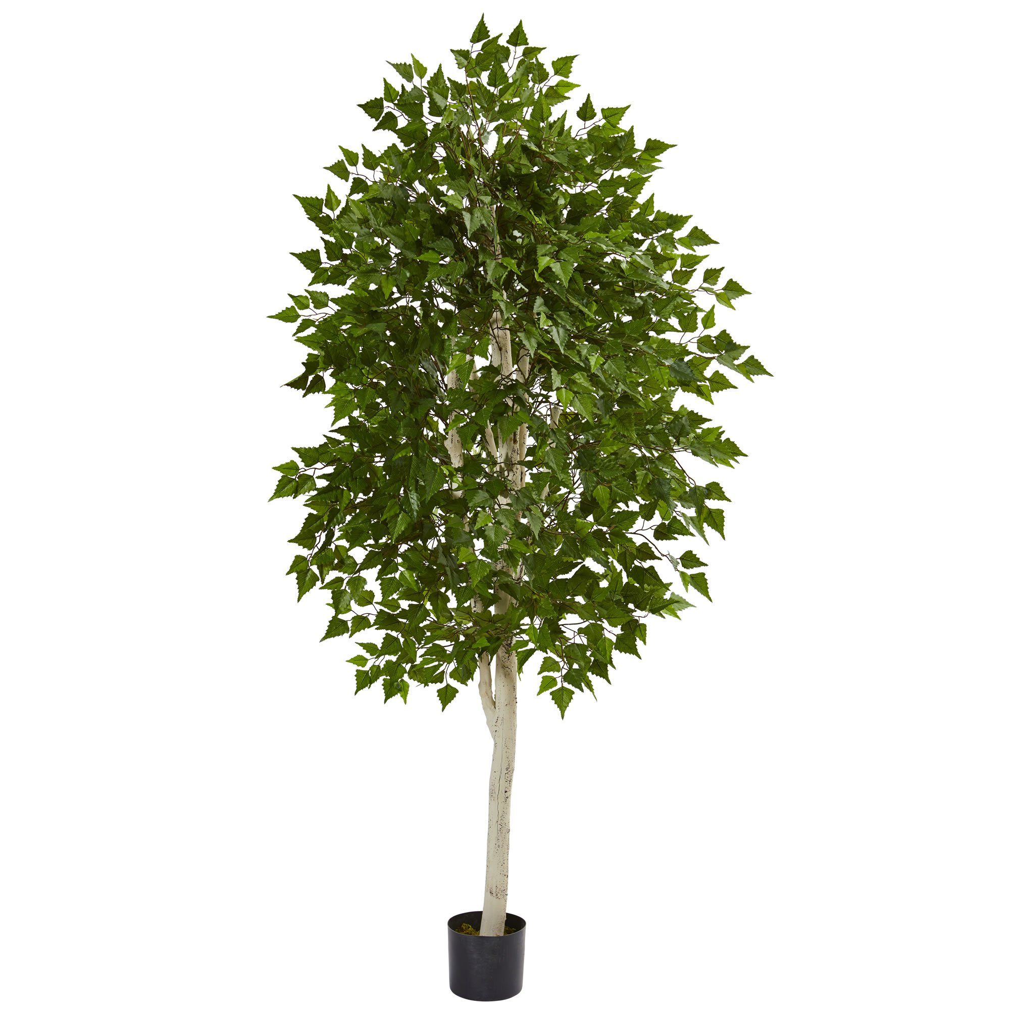 Nearly Natural 6' Birch Artificial Tree 6, Green by Nearly Natural