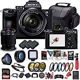 Sony Alpha a7 III Mirrorless Digital Camera with 28-70mm Lens (ILCE7M3K/B) + 64GB Memory Card + 2 x NP-FZ-100 Battery + Corel