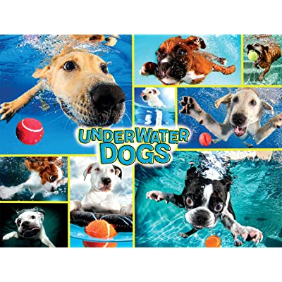 Buffalo Games - A Dog's Life - Underwater Dogs - 750 Piece Jigsaw Puzzle: Toys & Games