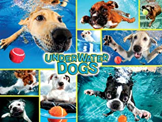product image for Buffalo Games - Underwater Dogs - 750 Piece Jigsaw Puzzle