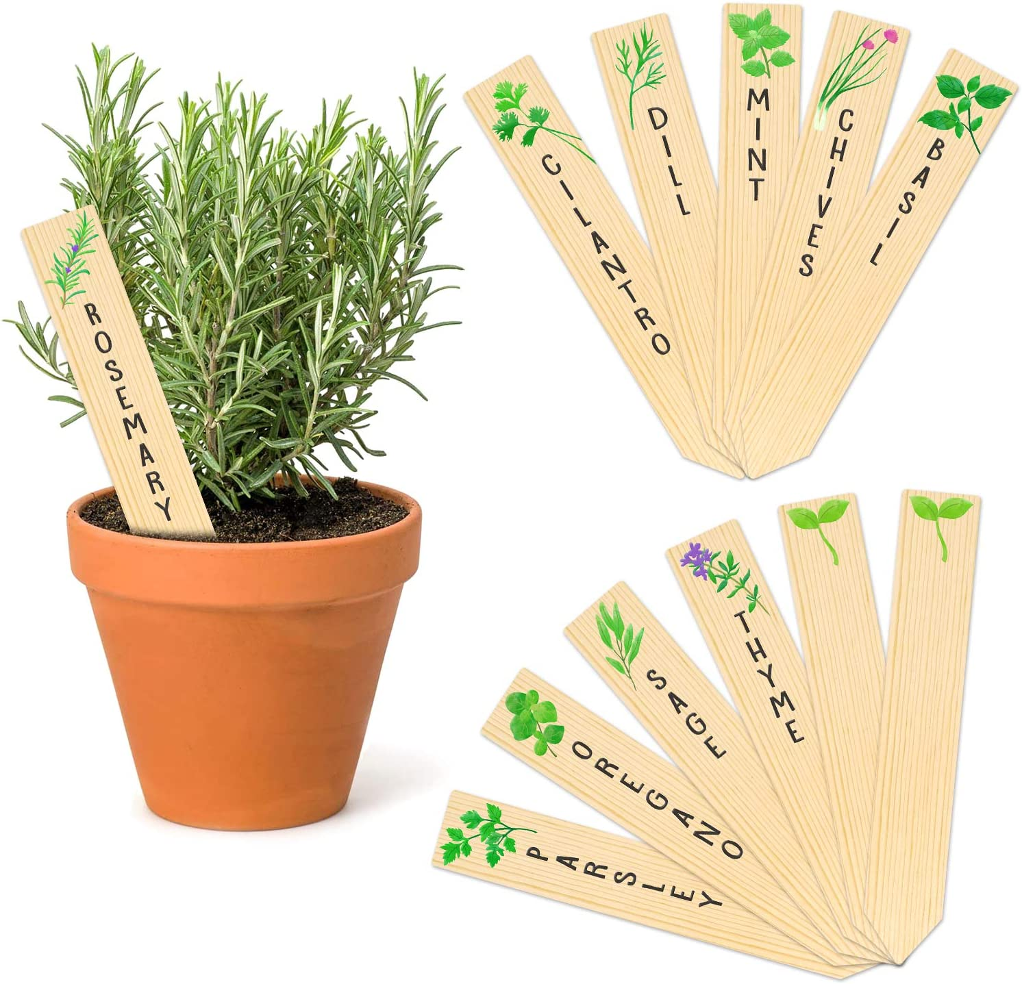 12-Pack Planted Assorted Kitchen Herbs! Huray Rayho Wooden Plant Labels Outdoor Indoor Garden Stakes Garden Gifts for Grandparents Garden Markers Garden Accessories