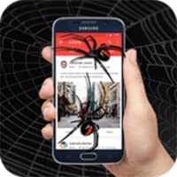 Spider On Screen Prank - Scary Spiders in Phone