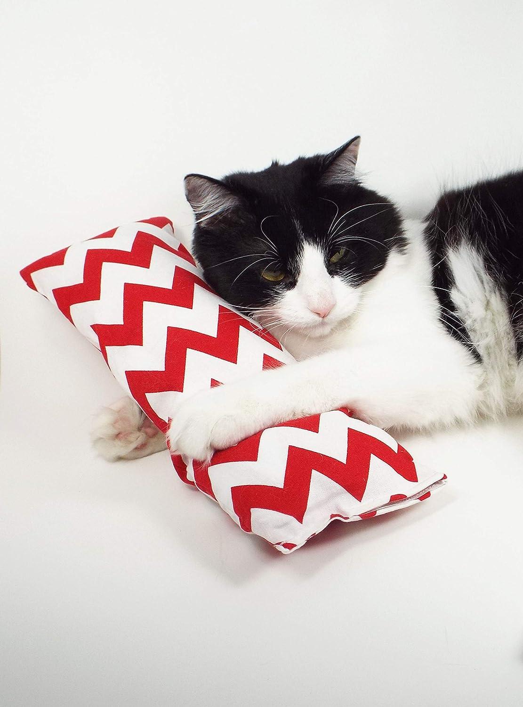 6 Kitty Kicker with Catnip