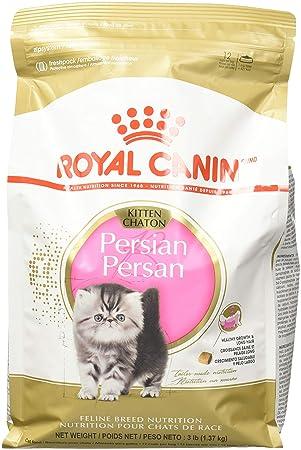 ROYAL CANIN Comida para gato persa, 3 libras: Amazon.es: Productos para mascotas