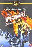 The Wild Angels [Region 2] [import]
