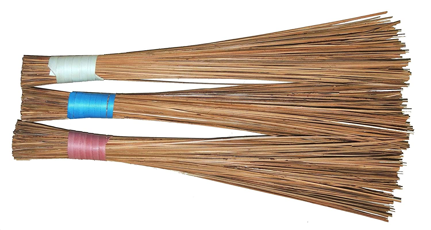 Generic BRAMMA Coconut Broomstick for Wet Floor, Garden and Outside (2ft)  -Pack of 3: Amazon.in: Home Improvement
