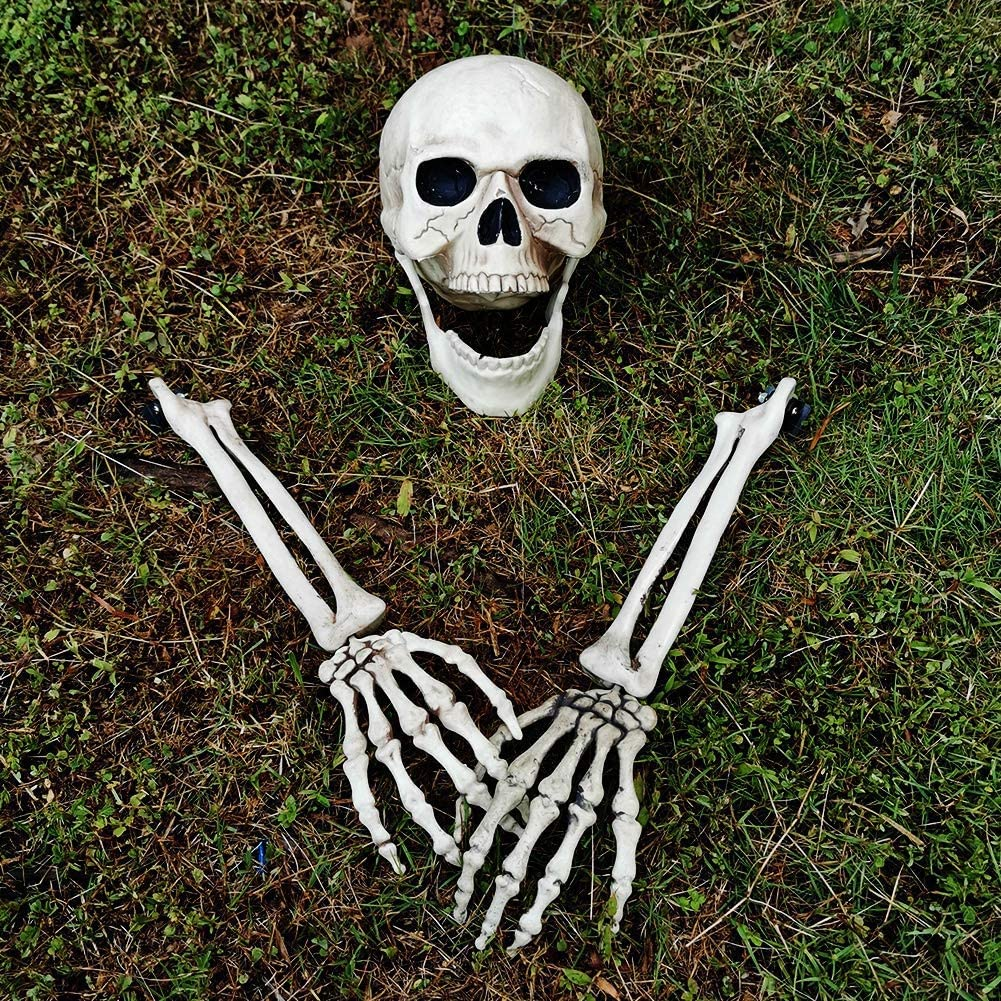 yosager Realistic Skull and Skeleton Arms Stakes, Indoor Outdoor Graveyard Best Halloween Yard Decorations: Garden & Outdoor