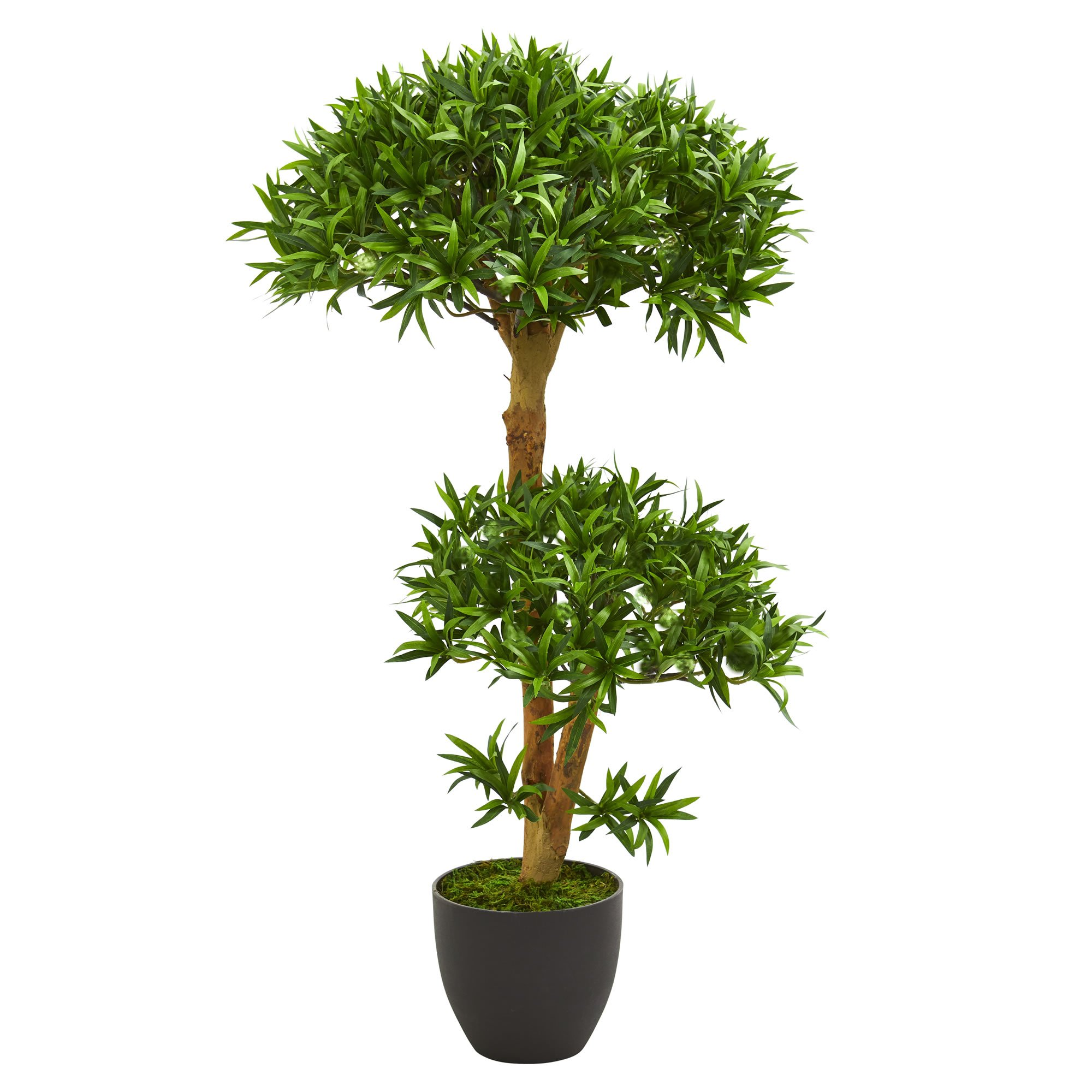 Nearly Natural 5554 3' Bonsai Styled Podocarpus Artificial Tree Plant, Green