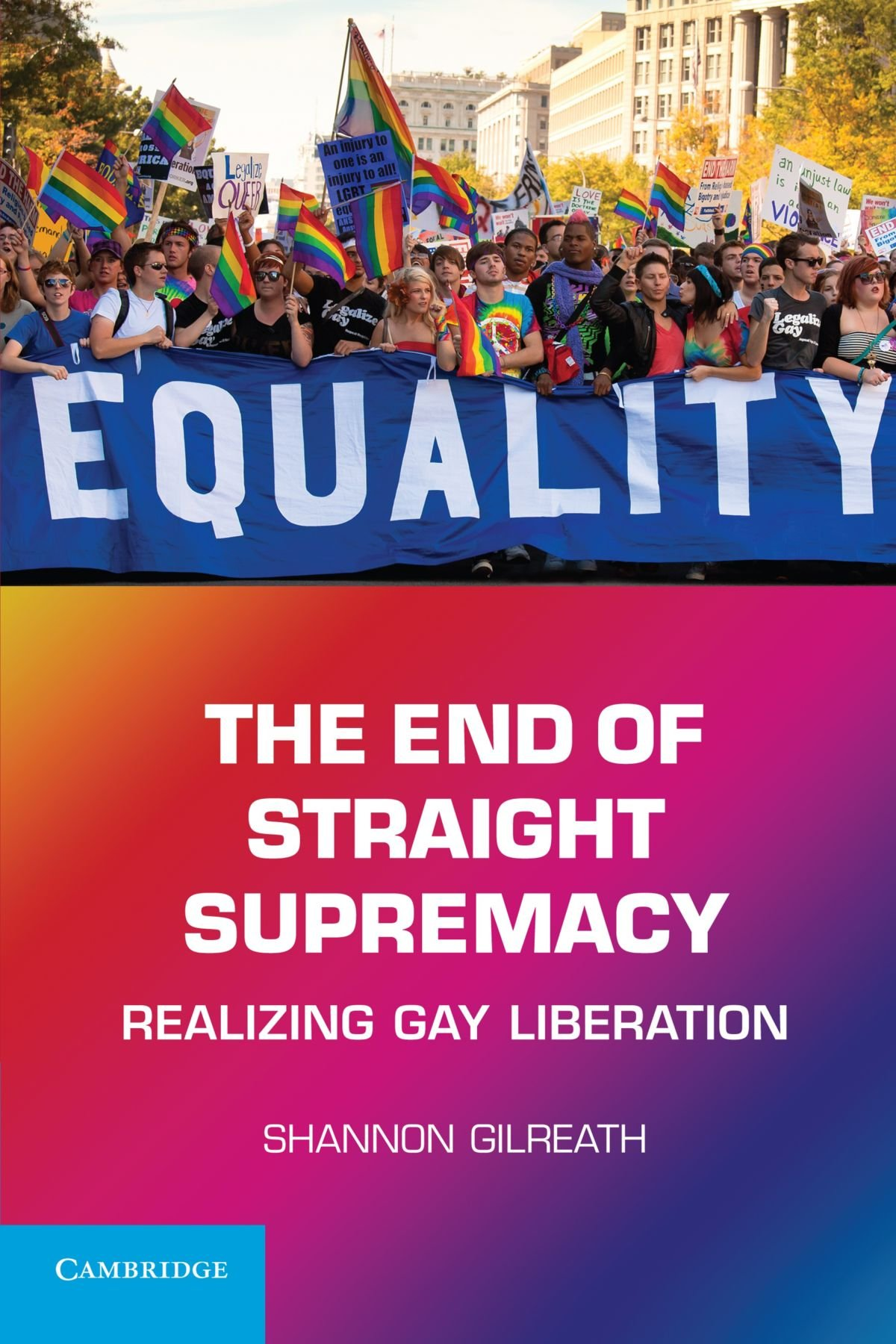 Download The End of Straight Supremacy: Realizing Gay Liberation ebook