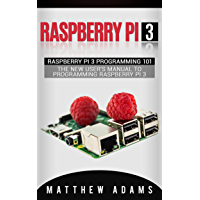Raspberry Pi 3: Raspberry Pi 3 Programming 101 - The New User's Manual To Programming Raspberry Pi 3 (Raspberry Pi 3 Guide) (English Edition)