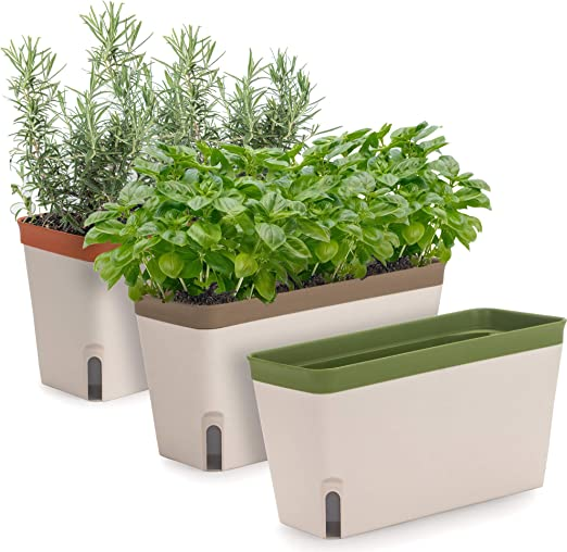 Amazon Com Windowsill Herb Planter Box Set Of 3 Rectangular Self Watering Indoor Garden For Kitchens Grow Plants Flowers Or Succulents Large Water Reservoir Kitchen Dining