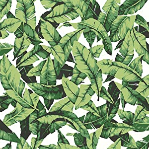 """RoomMates Tropical Palm Leaf Peel and Stick Wallpaper, 20.5"""" x 16.5 feet, Green - RMK11045WP"""
