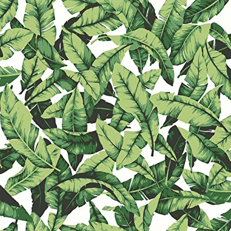 Roommates Tropical Palm Leaf Peel And Stick Wallpaper 205 X 165 Feet Green Rmk11045wp