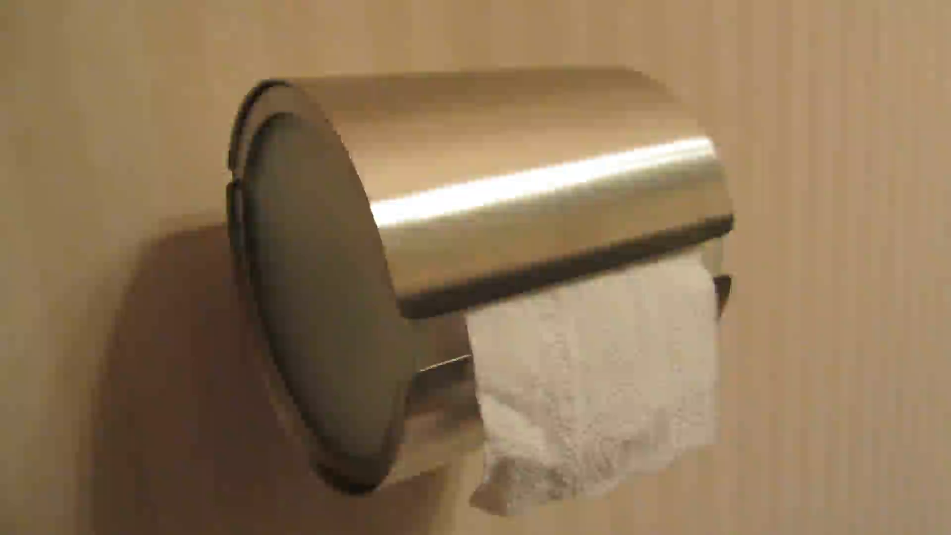 amazoncom customer reviews blomus toilet roll holder wrap around - i got this to keep my cat from eating the toilet paper i will have to keepthe paper tucked into the dispenser and hopefully she won't try to get intoit