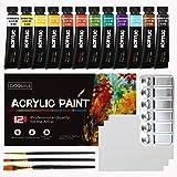 Pinturas acrílicas para artistas 12 colores vibrantes 4 pinceles 1 paleta 3 tablero de lona GC-AP12