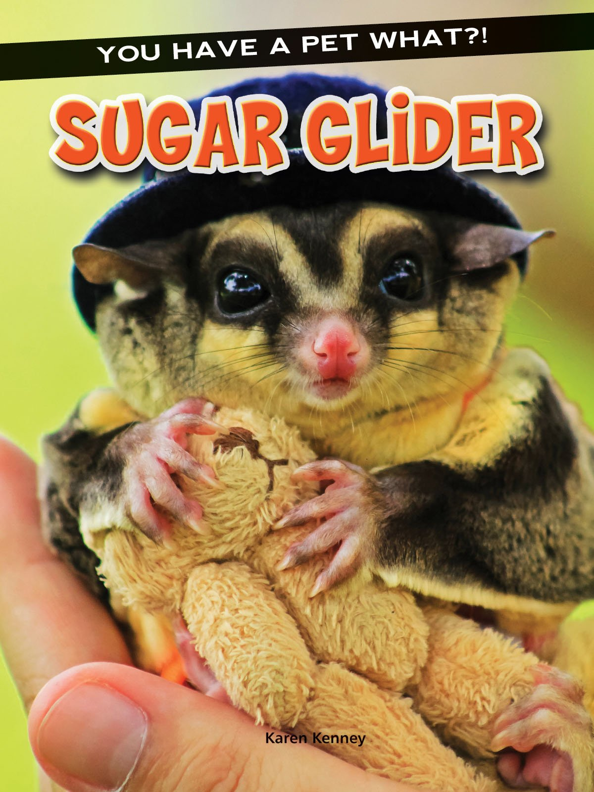 Read Online Sugar Glider (You Have a Pet What?!) pdf