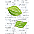 How to Remember Equations and Formulae: The LEAF System