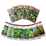 Living Whole Foods Assortment of 12 Culinary Herb Seeds - Non-GMO   Grow Cooking Herbs: Parsley, Thyme, Cilantro, Basil, Dill, Oregano, Sage & More