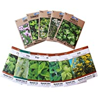Living Whole Foods Assortment of 12 Culinary Herb Seeds - Non-GMO | Grow Cooking Herbs: Parsley, Thyme, Cilantro, Basil, Dill, Oregano, Sage & More