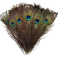 10Pcs Peacock Feathers 10-12inch and 10Pcs Peacocks Sword 12-15inch for DIY natural Feathers For crafts home wedding…