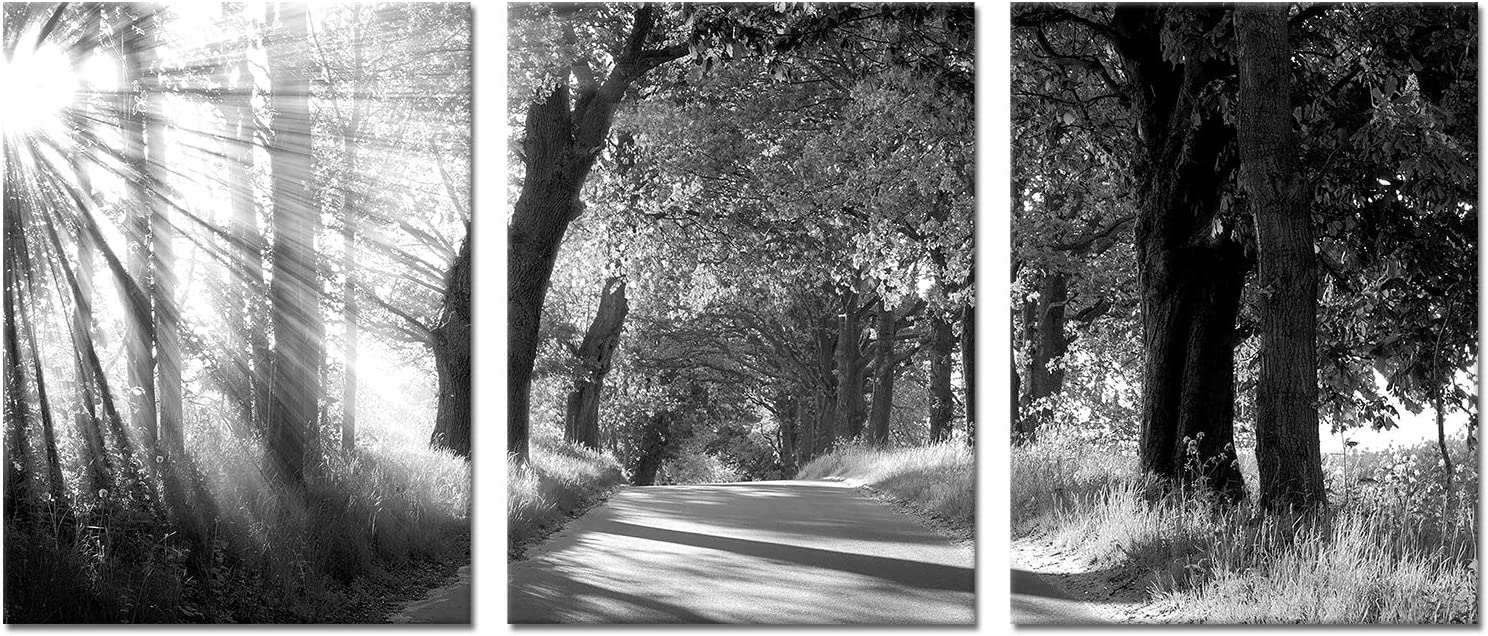Kalormore Black and White Canvas Wall Art Sunrise Tree Forest Picture Giclee Prints Artwork 3 Pieces Framed Decoration for Modern Living Room Bedroom Bathroom Decor