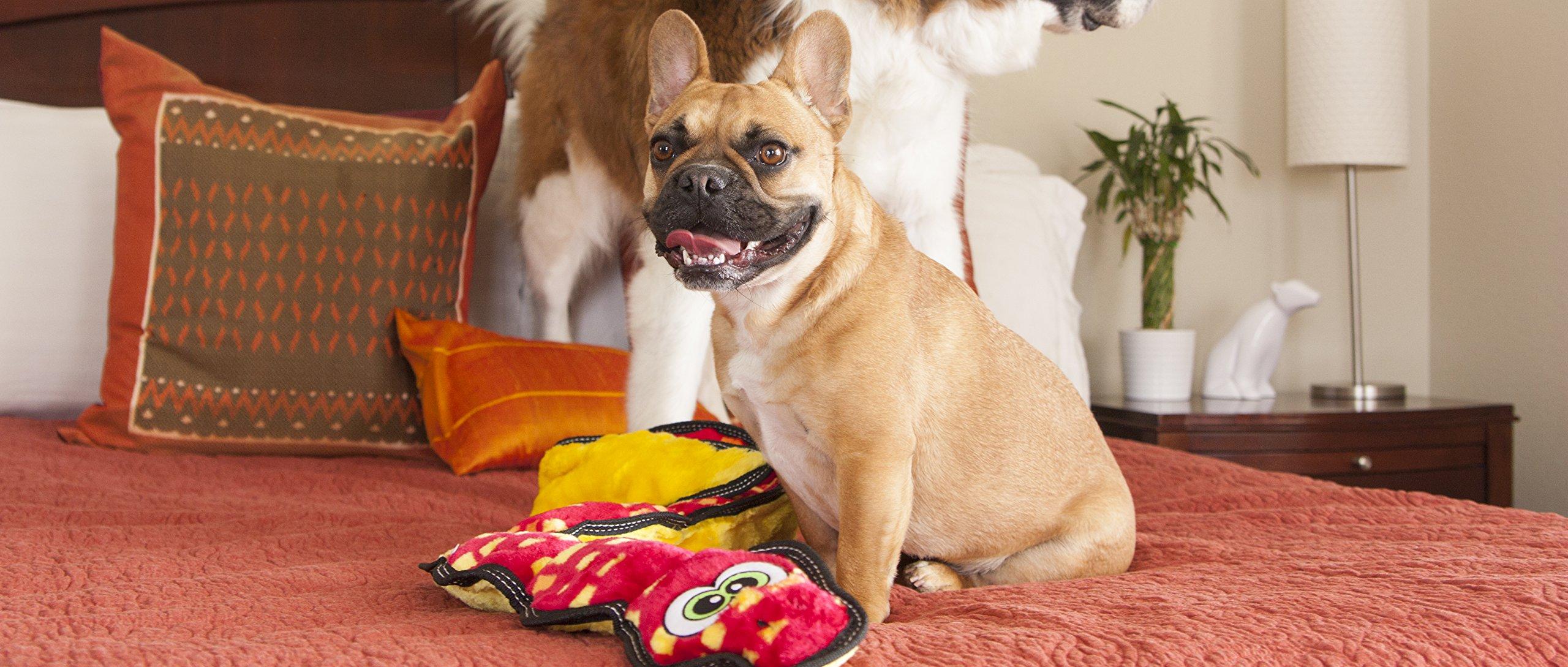 Outward Hound Invincibles Tough Seamz Stuffingless Durable Tough Plush Toy for Dogs, Tough Squeaky Dog Toy by, Snake, 3 Squeakers by Outward Hound (Image #2)