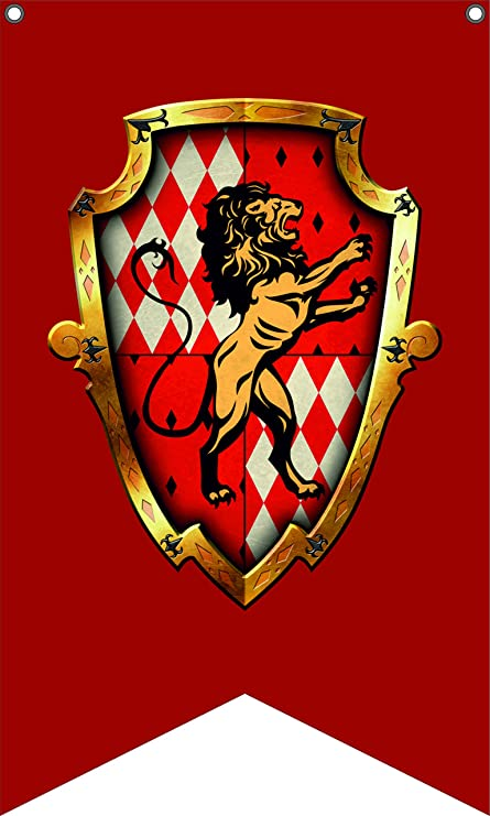 Amazon.com: Harry Potter Bandera | Gryffindor Retrato ...