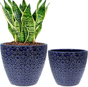 2 Pack Ceramic Plant Pots Indoor, DeeCoo Flower Pot Set 5.5 + 6.5 Inch, Blue Planters for Plants, Clay Plant Pots with Drainage Hole for Snake Plants, Orchid, Succulent, Cactus - Outdoor Garden Pots