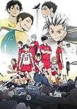 【初回生産分】 OVA『ハイキュー‼ 陸 VS 空』 (スリーブケース仕様) [Blu-ray]