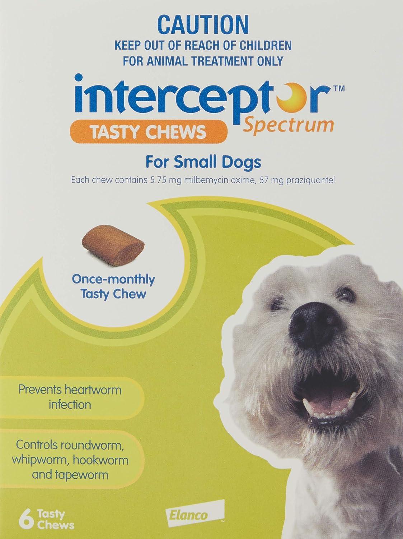 Interceptor for Small Dogs 6 Tasty Chews Pet Meds
