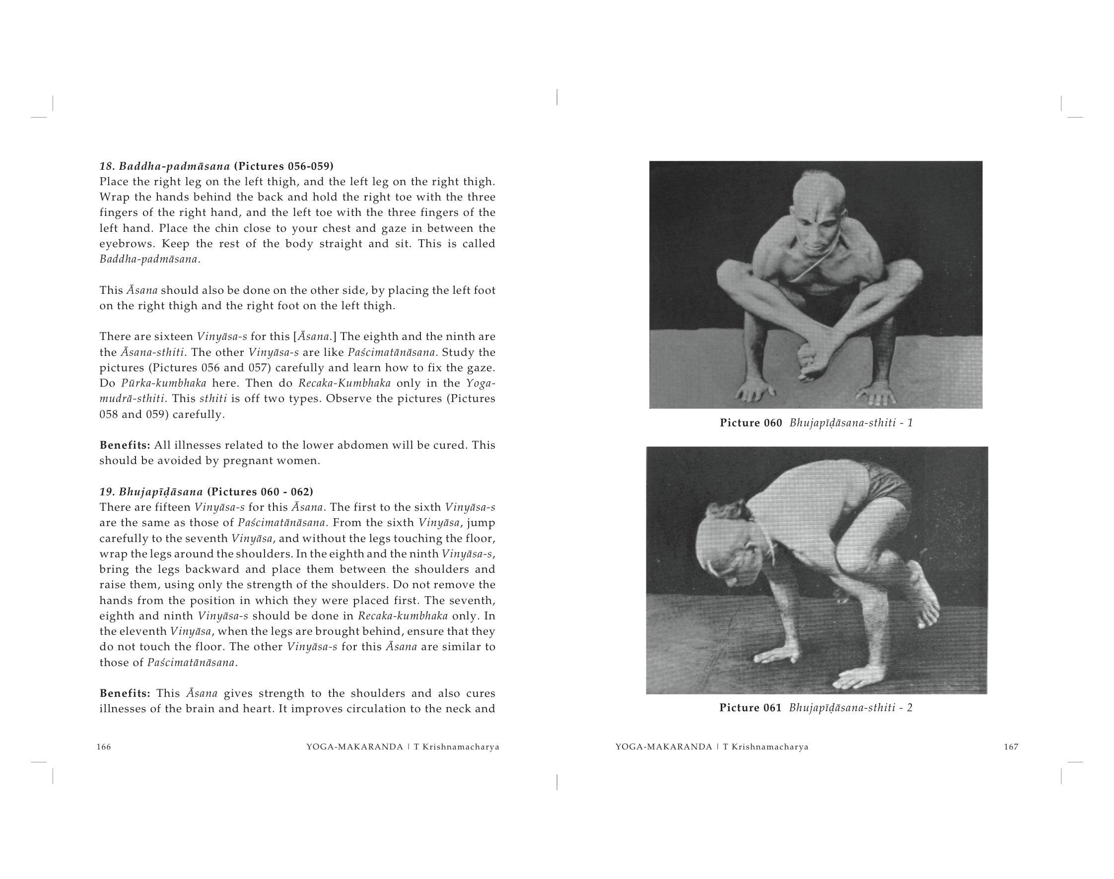 Amazon.com: Yoga Makaranda: The Nectar of Yoga ...