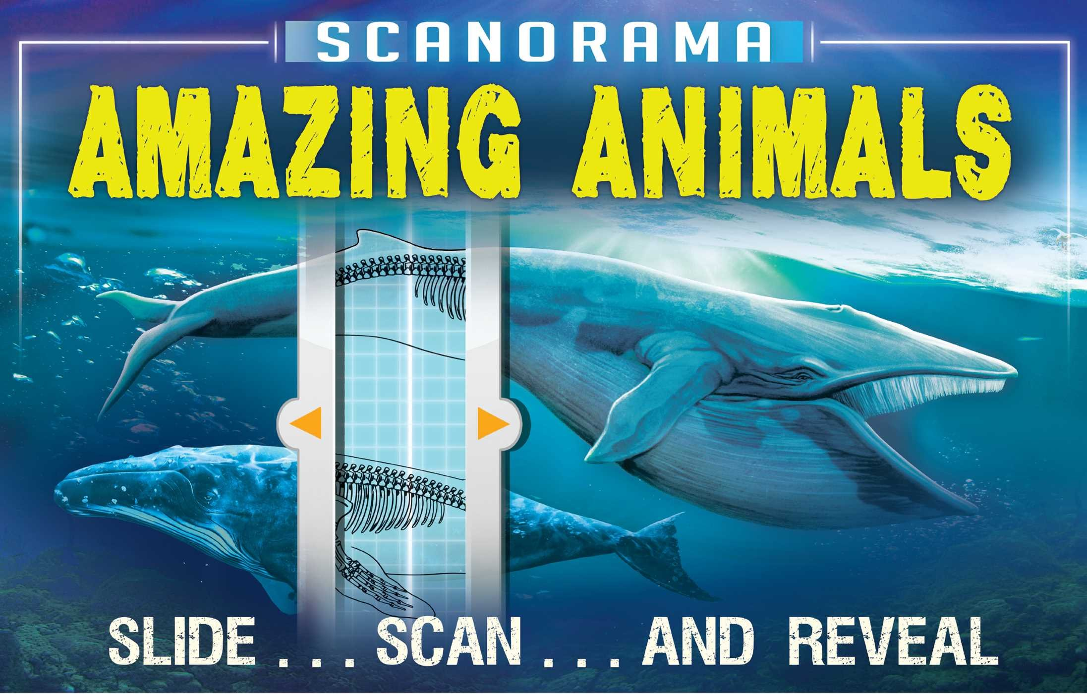 Scanorama: Amazing Animals