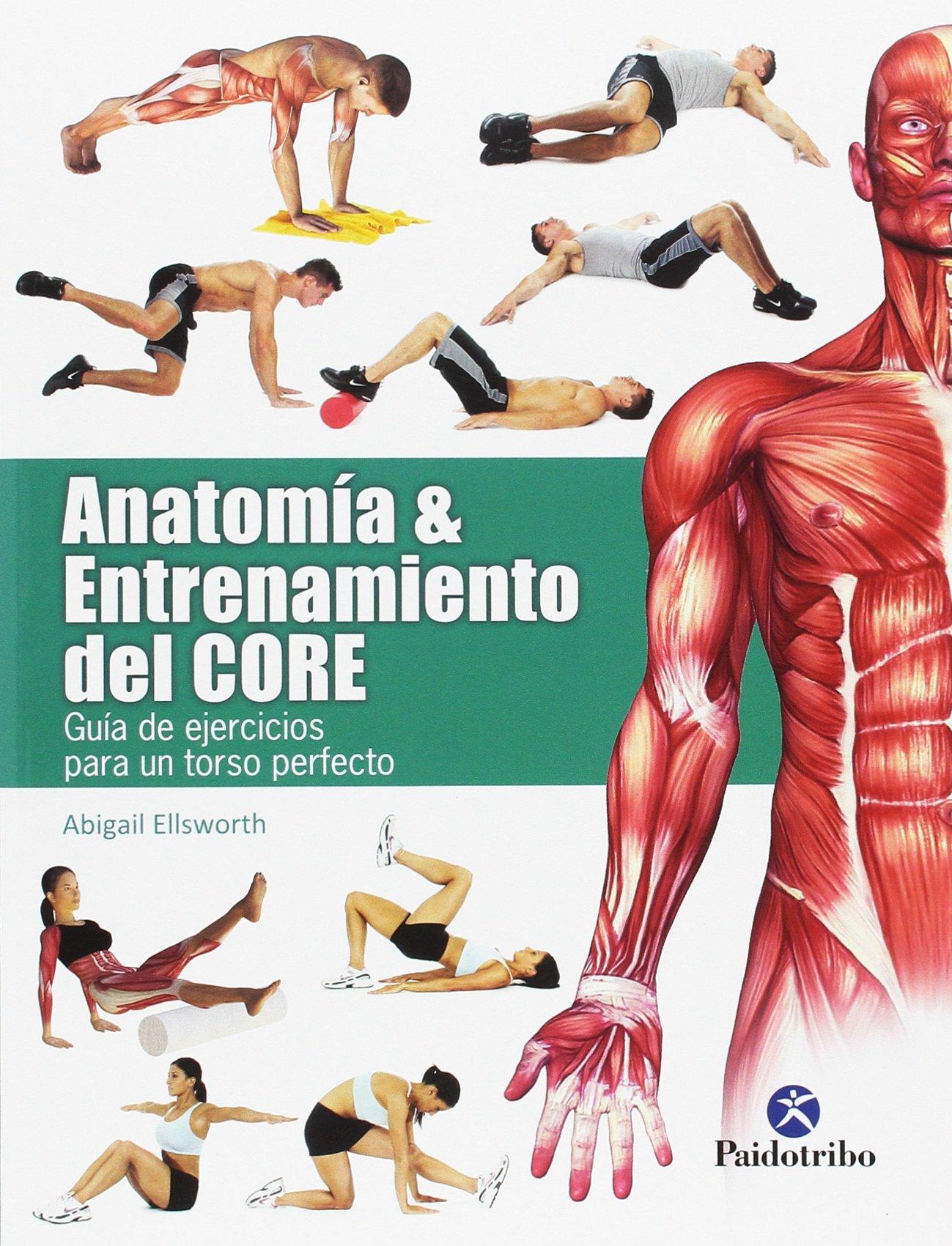 Anatomía & entrenamiento del CORE (color) (Deportes): Amazon ...