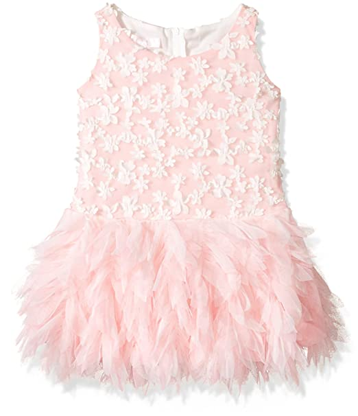 882aebc987d9 Biscotti Big Girls' Frilly Flowers Dress W/ Embroidered Bodice, Pink, ...