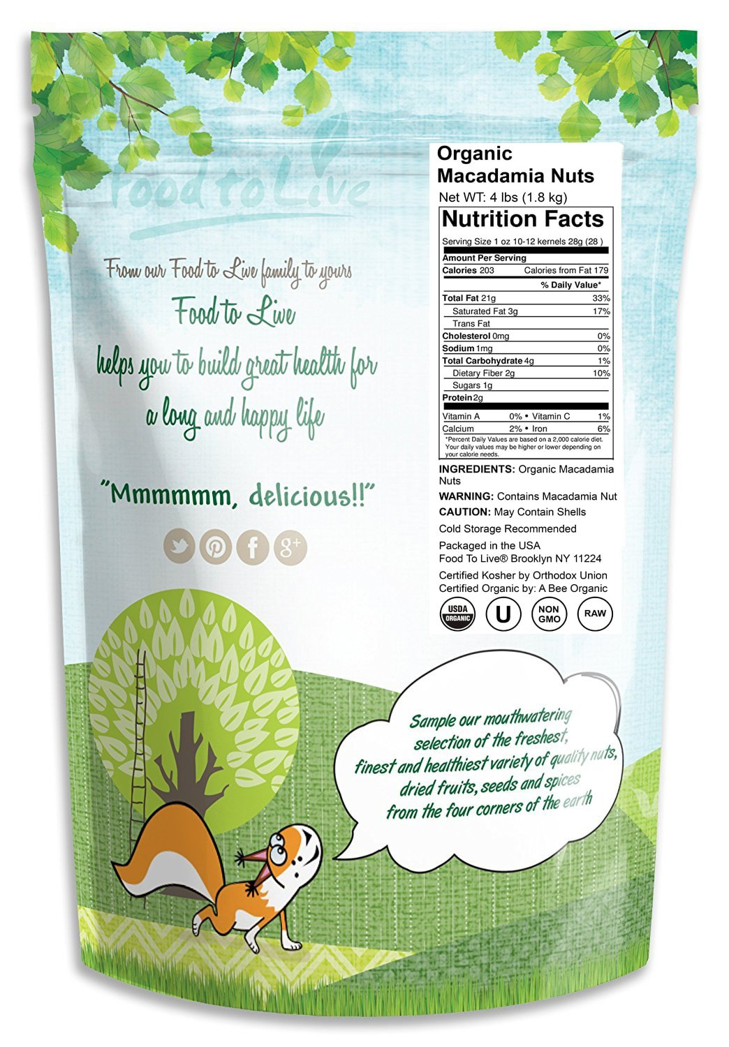Food to Live Organic Macadamia Nuts (Raw) (4 Pound) by Food to Live (Image #2)