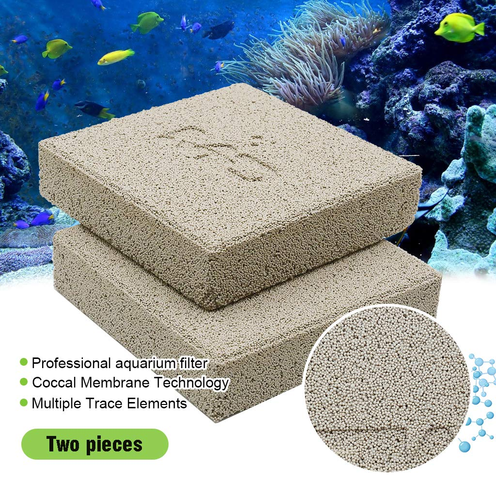 boxtech Aquarium Filter Media, Ceramic Biological Filter Media for Marine and Freshwater Fish Tank, Two Pcs by boxtech