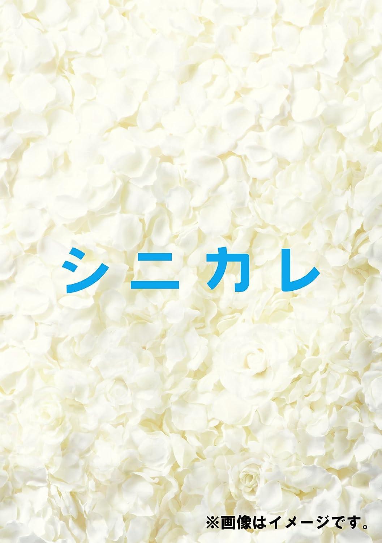 シニカレ完全版 DVD-BOX B00BCYYCC0